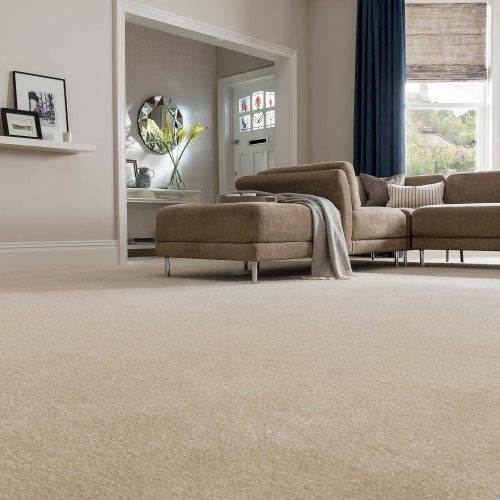 cream-carpet-living-room-forest-superior-lambswool-10